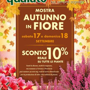 arena_autunno_17_set