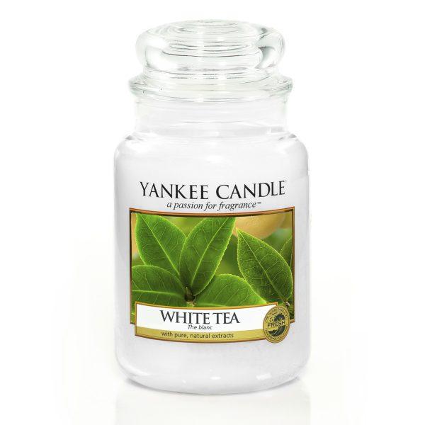 white tea giara grande