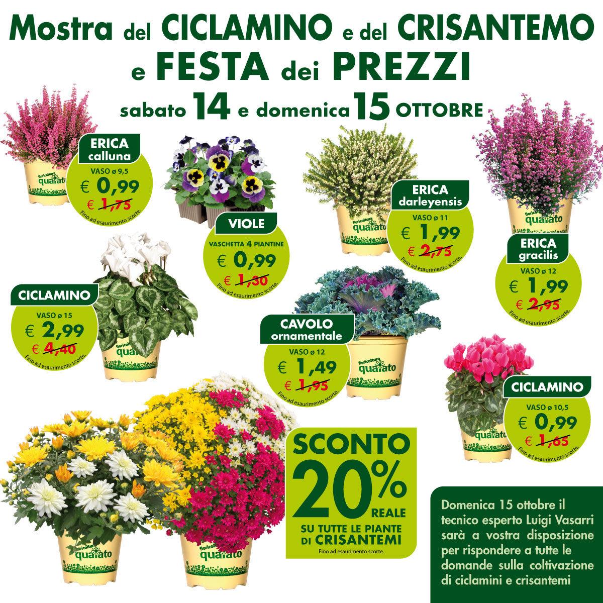 Mostra del Ciclamino e del Crisantemo e Festa dei Prezzi
