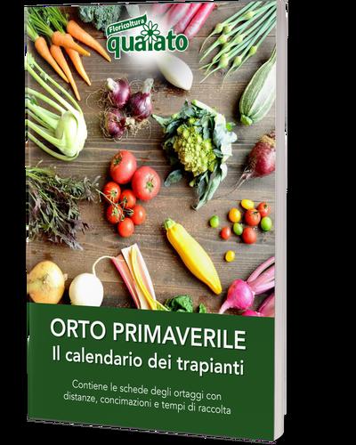 Calendario Trapianti Orto Pdf.Calendario Dell Orto Guida Ai Trapianti Primaverili
