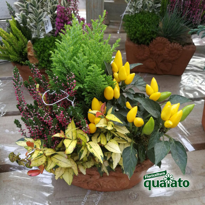 Composizione Vasi Da Balcone idee per composizioni floreali autunnali davvero uniche